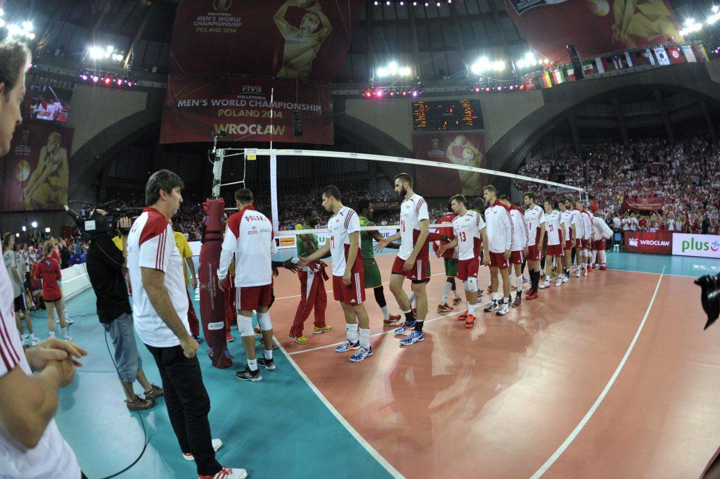 Mistrzostwa Świata w Siatkówce Mężczyzn (2014)